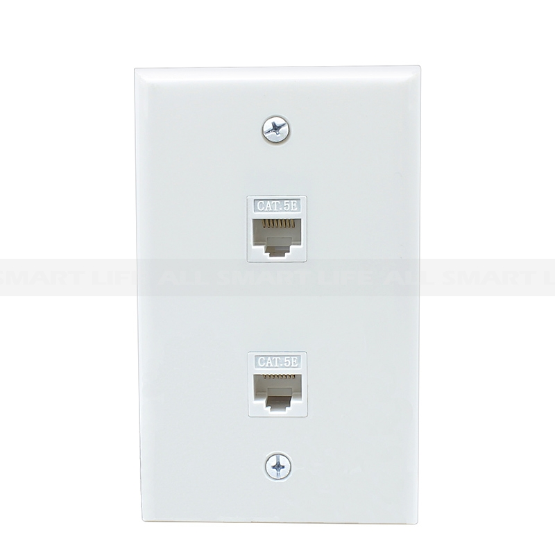 Fabulous Ethernet Network Cat5E Wall Plate Dual 2 Port Rj45 Connector Wiring Digital Resources Indicompassionincorg