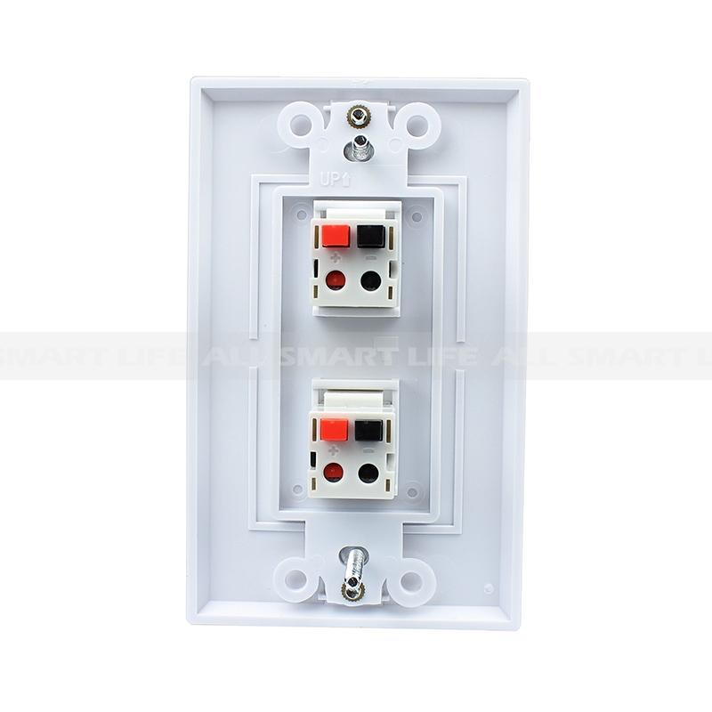 2 port dual speaker module wall plate. Black Bedroom Furniture Sets. Home Design Ideas